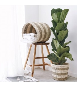 2 PIECE BASKET SET - TWISTED SEAGRASS & TWISTED PALM LEAF - SUSTAINABLE NATURAL FIBRE BASKETS - B6